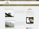 ΑΝΙΜΑ Σύλλογος Προστασίας και Περίθαλψης Άγριας Ζωής