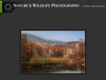 Nature wildlife photography - Φωτογραφία φύσης και άγριας ζωής