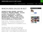 Windhunde Galgo in Not - Austria| Vermittlung Galgos,Podencos,Hunde aus Tierheim