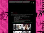 wingchun. com. mx, WING CHUN , VING TSUN, WENG CHUN, WING CHUNG, VING SHUN, WING SHUN, VING CHUN,