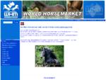 Pferde kaufen Pferde verkaufen Pferde versteigern Pferdemarkt world-horsemarket.at