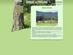 Žaga - Tiples predelava lesa, prodaja, odkup lesa, lupljenje hlodovine, mizarski les, brune, l