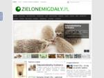 Zielone Migdały - ekologicznie i nowocześnie