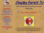 Zanshin karaté do